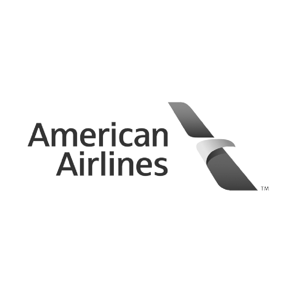alicia-fowler-clients-2-americanairlines.png