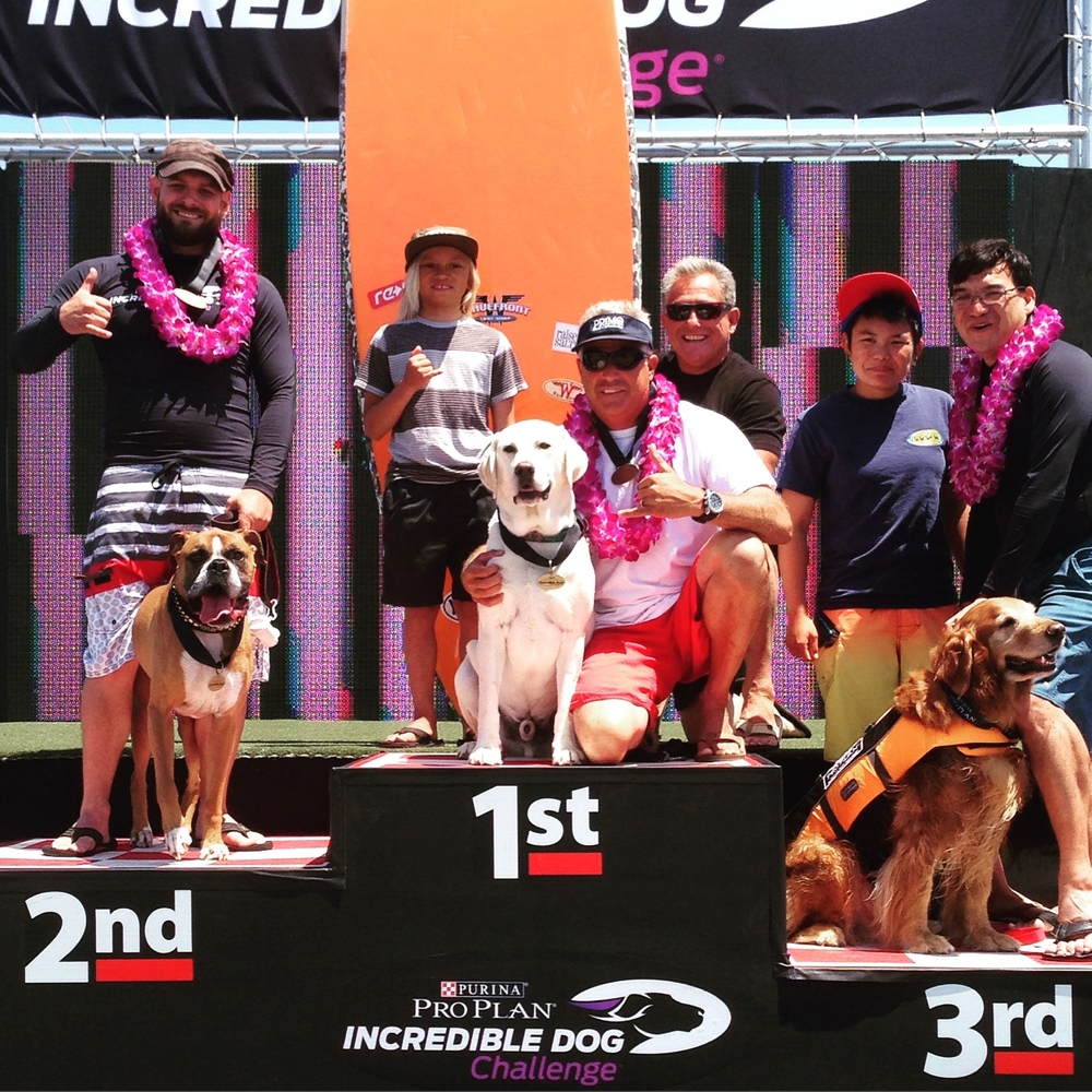 Team rider Haoleboy wins the Purina Dog Challange