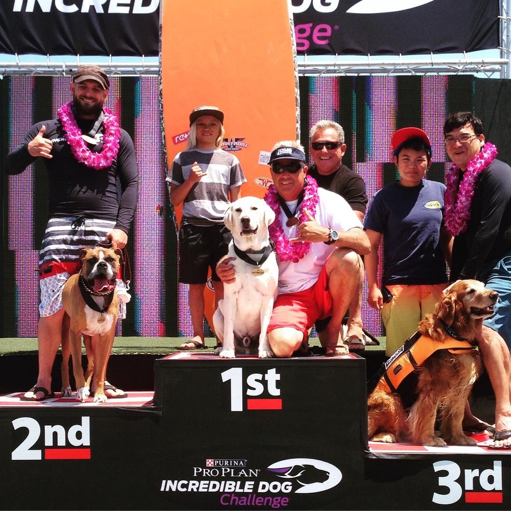 Team rider Haoleboy wins the Purina Dog Challange