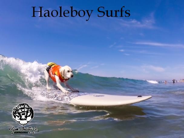 Haoleboy Surfs 2.jpg