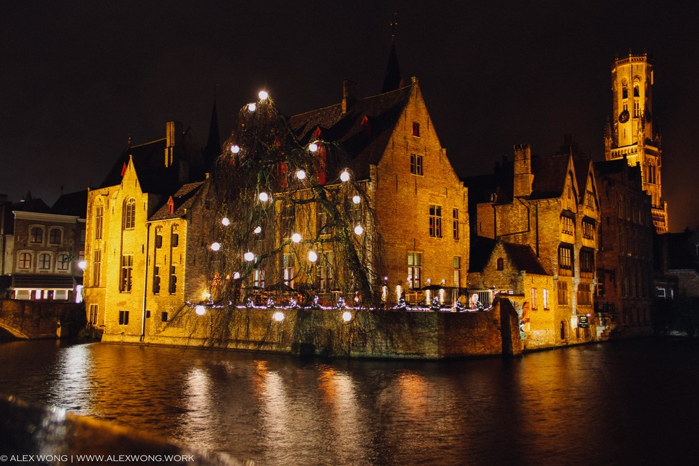 Bruges - Lit Up Tree.jpg