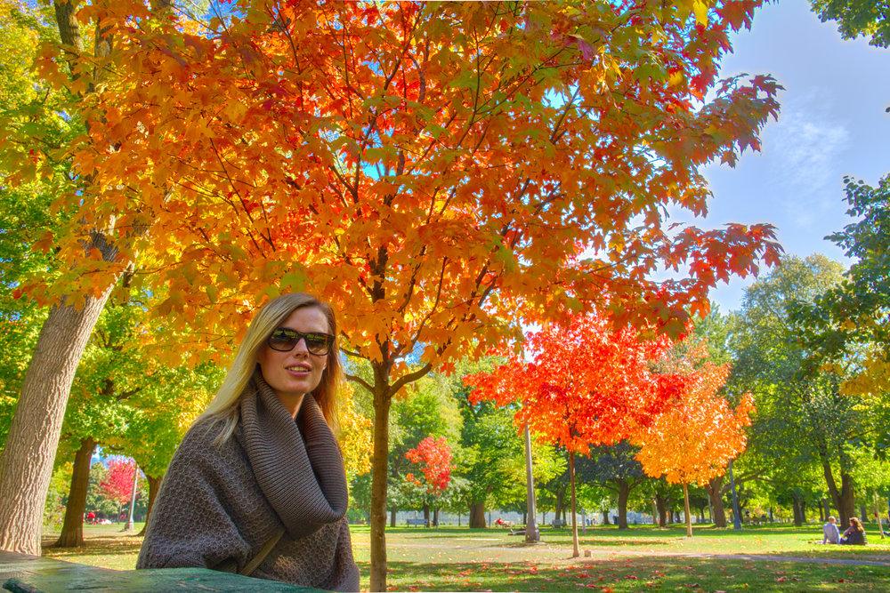 autumn16-.jpg