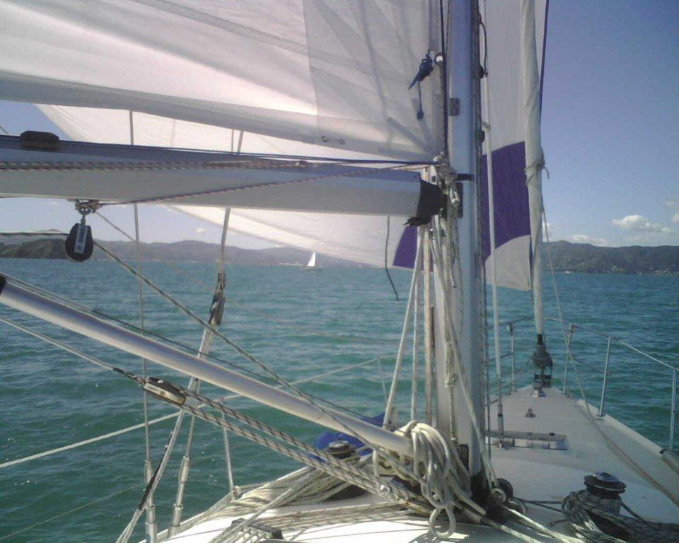 Sailing Yacht Wellington.jpg