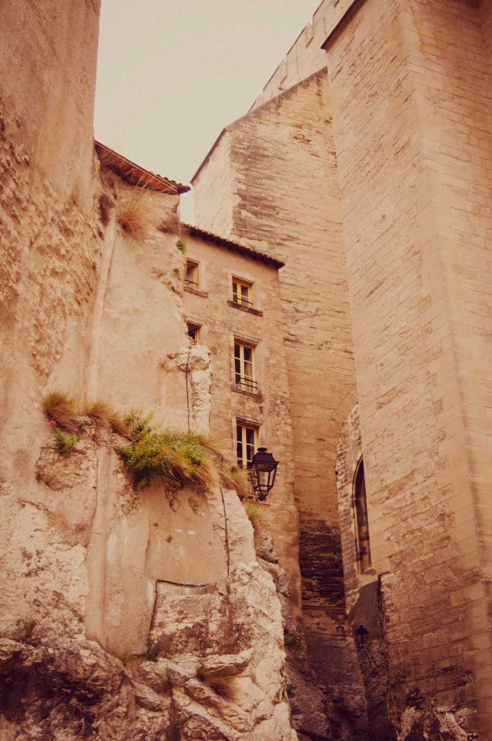Avignon, Summer 2012