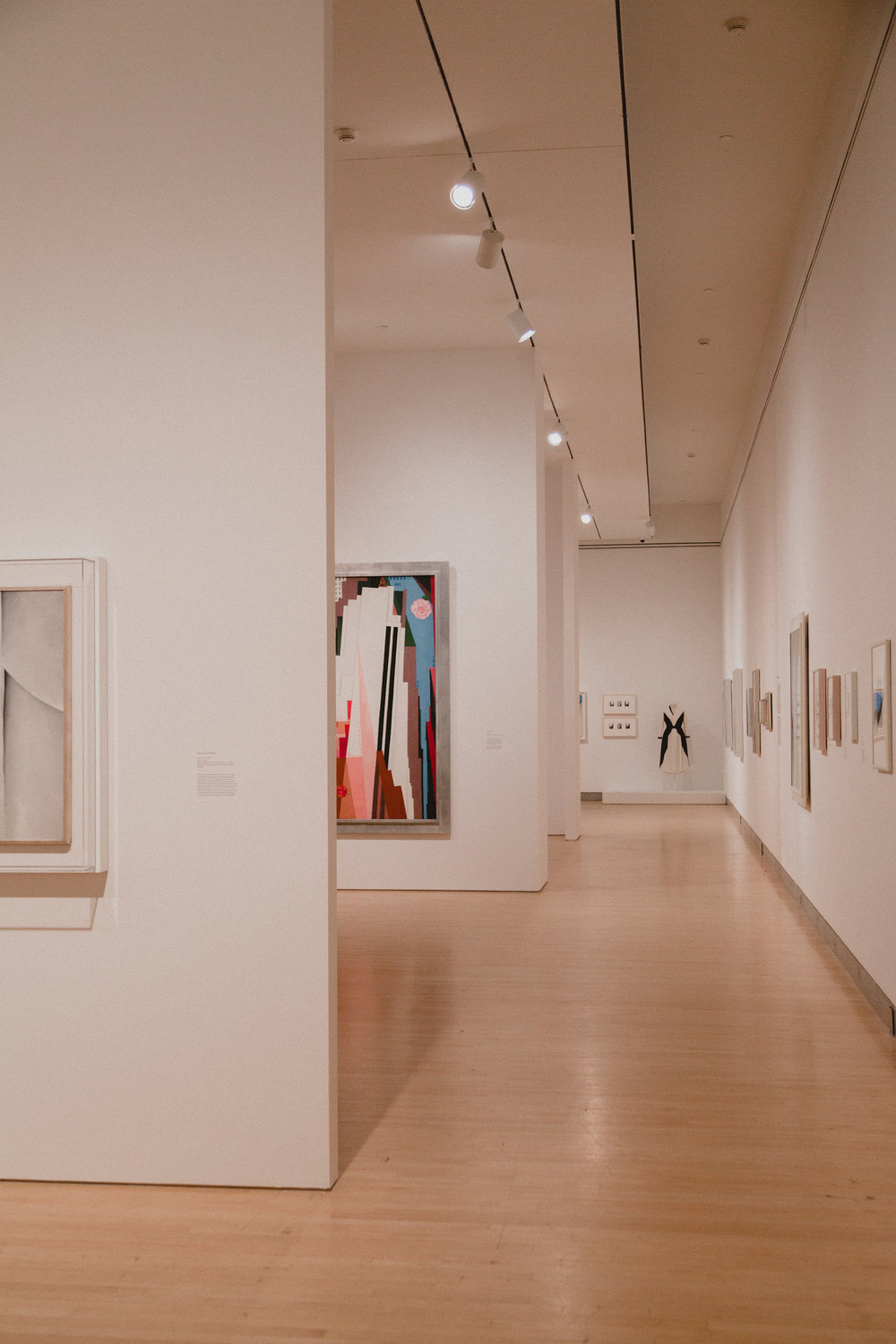 """Georgia O'Keefe: Living Modern"" at the Brooklyn Museum"