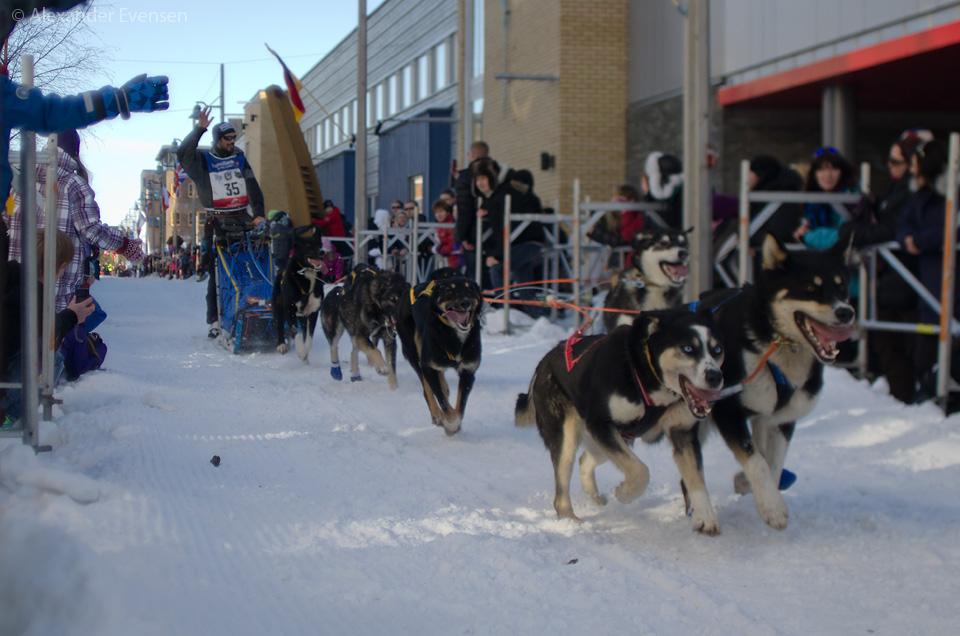 Aslak Prestbakmo starting Finnmarksløpet 2012 - 500 km