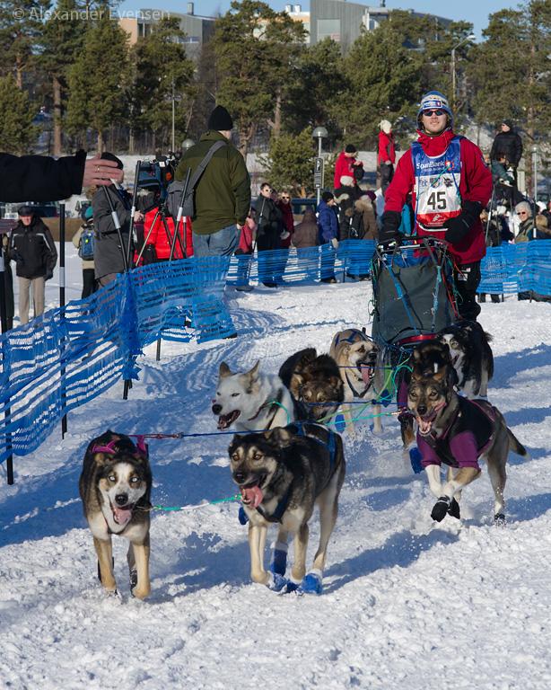 Stian Hasfjord starting Finnmarksløpet 2012 - 500 km