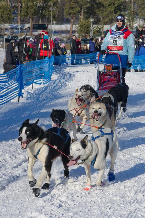 Pål Karlsen Haugsnes starting Finnmarksløpet 2012 - 500 km