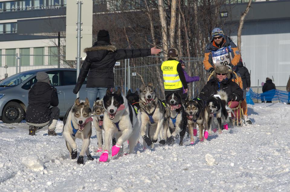 Harald Tunheim starting Finnmarksløpet 2012 - 1000 km