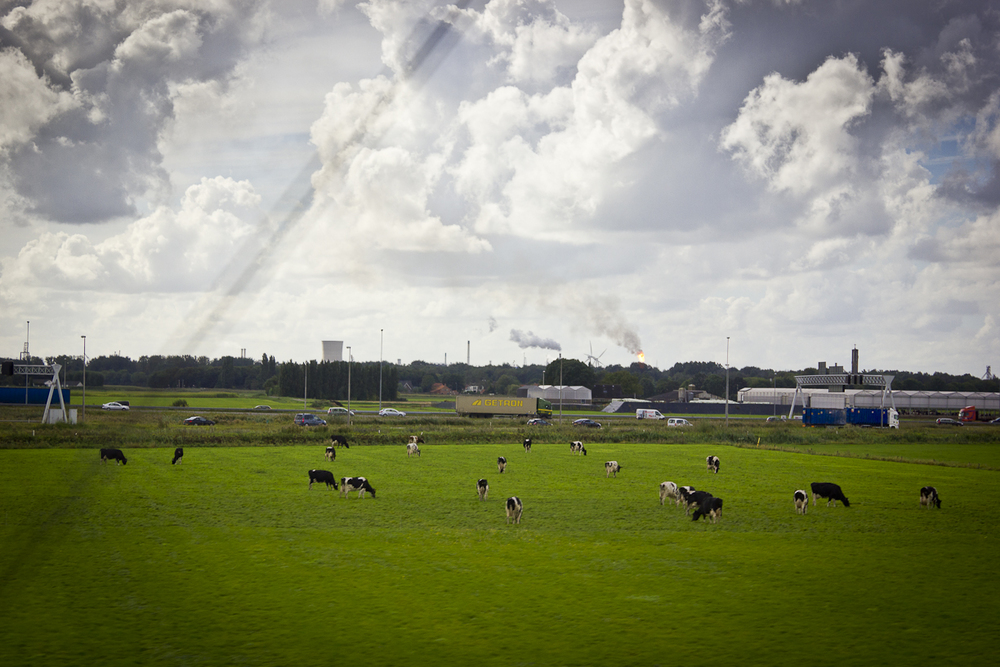 Hola Holanda-36.jpg