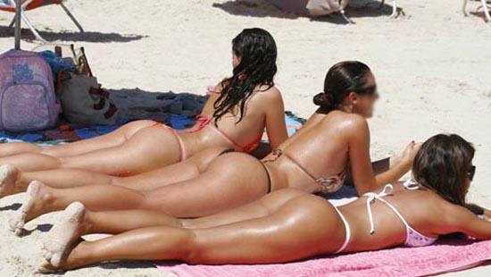 gatas-tomando-sol-na-praia2.jpg