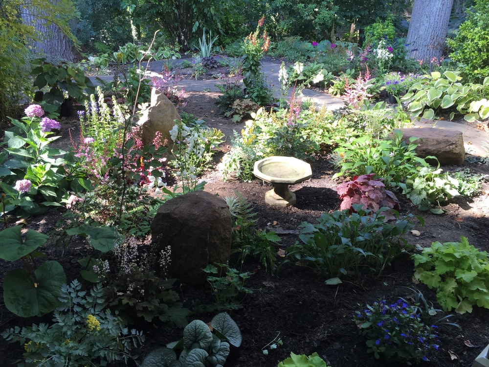 Shade Garden in Philadelphia, PA with Inspired Gardens