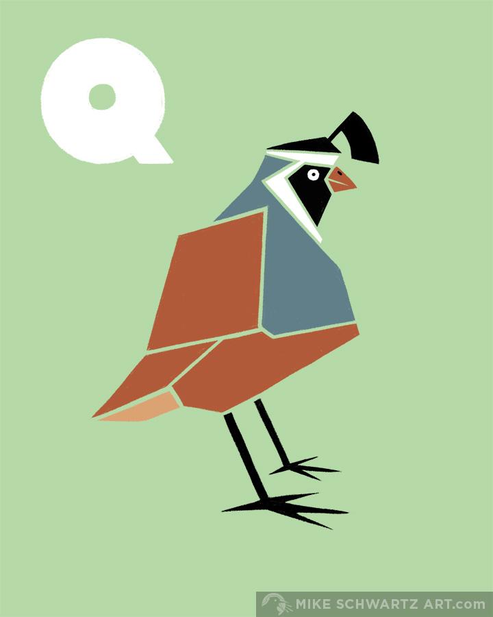 Mike-Schwartz-Illustration-Quail.jpg