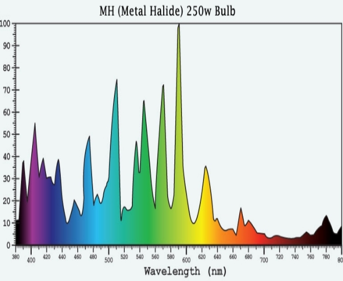 Metal Halide SPD.jpg