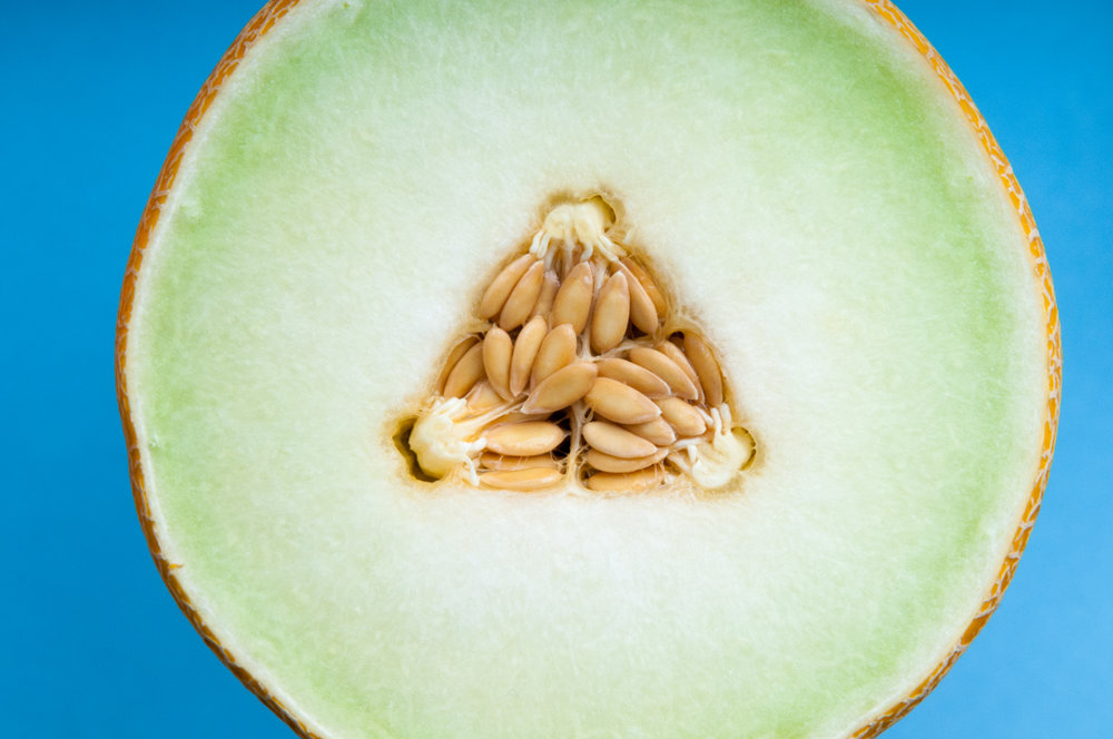 Sliced fresh melon, healthy fruit isolated on a background