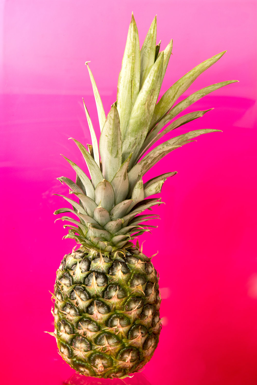 Pineapple isolated on bright neon pink background