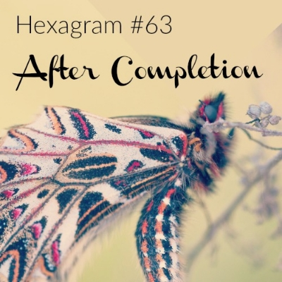 Hexagram 63 After Completion.jpg
