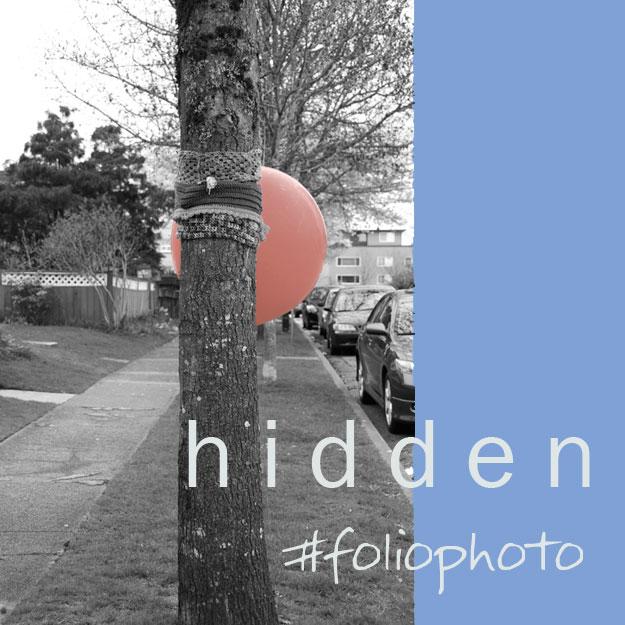 foliophoto-hidden.jpg