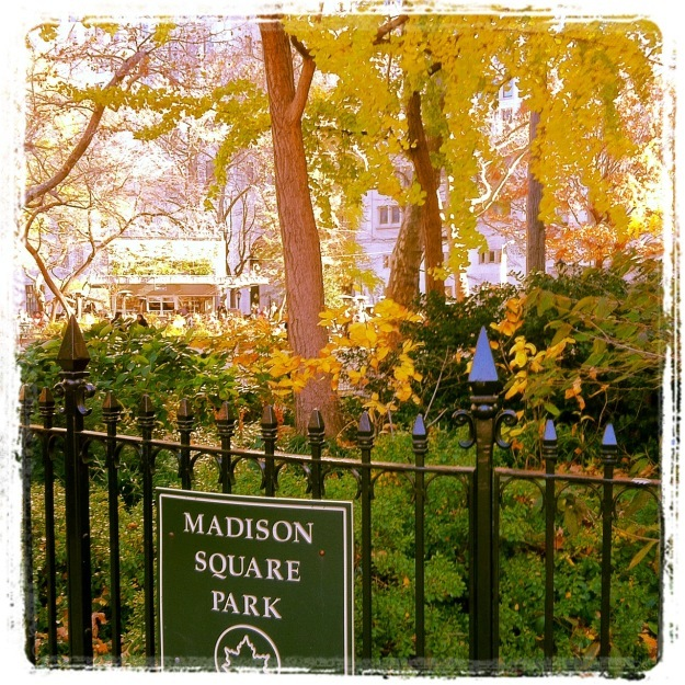 Madison Square Park - New York City