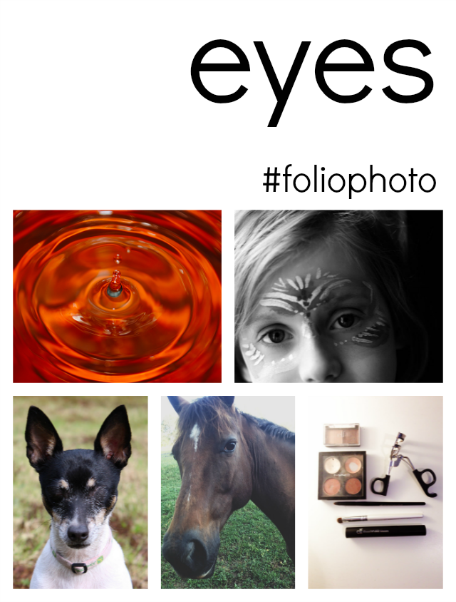 foliophoto eyes learning to photograph