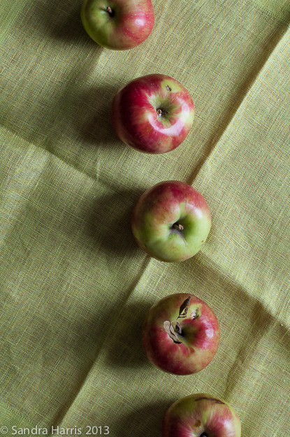 apples graphic autumn fall linen green - Sandra Harris