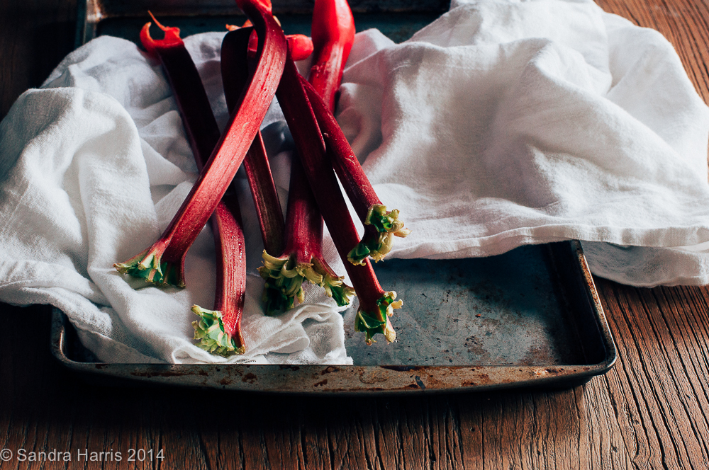fresh rhubarb from the farmer's market - Sandra Harris