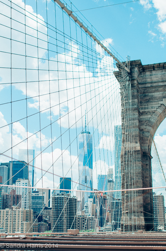 Brooklyn Bridge and Freedom Tower - Sandra Harris