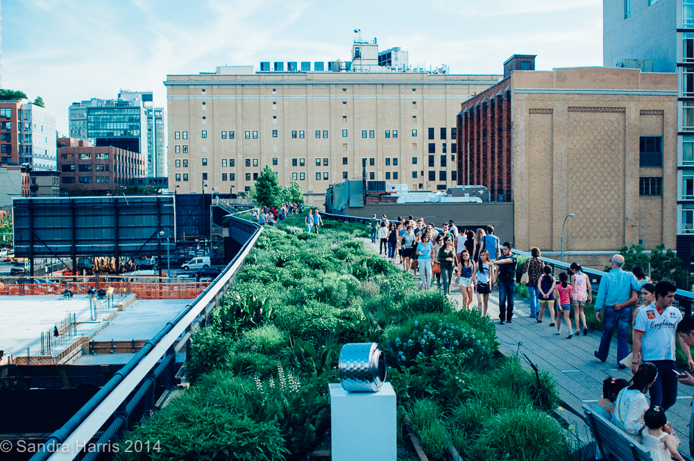 Highline Park, NYC - Sandra Harris