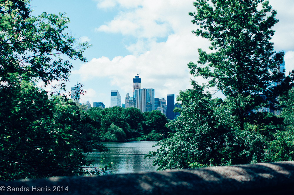 Central Park, NYC - Sandra Harris