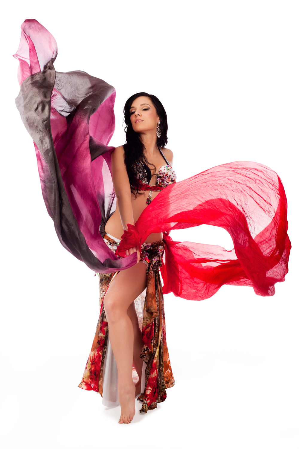 belly dancer veils south florida