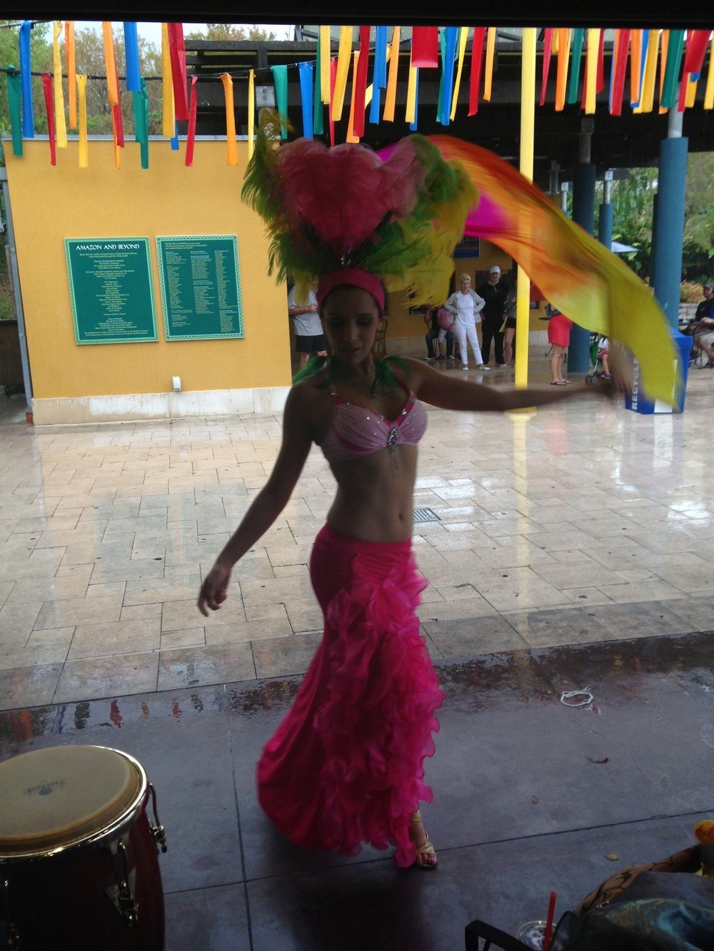 samba brazilian amaozonia dancer west palm beach zoo miami south beach