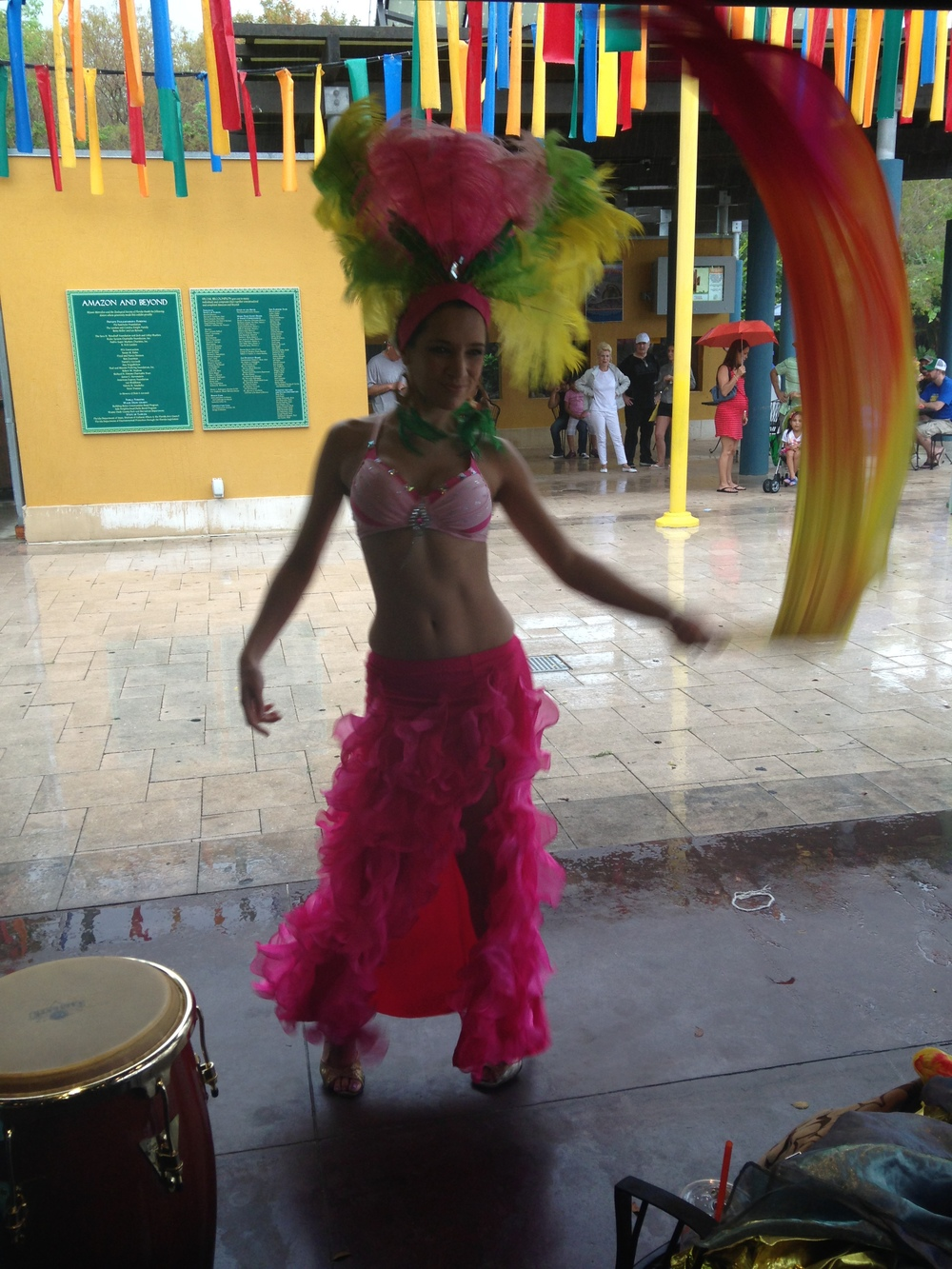 samba dance zoo miami