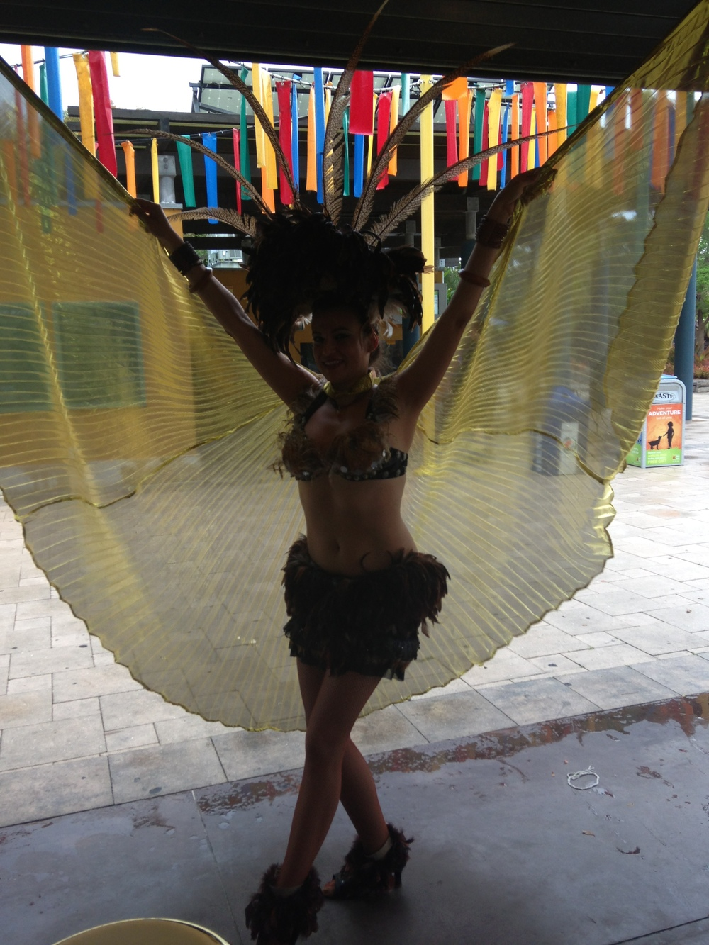 samba dancer boca raton lake worth boynton beach delray beach