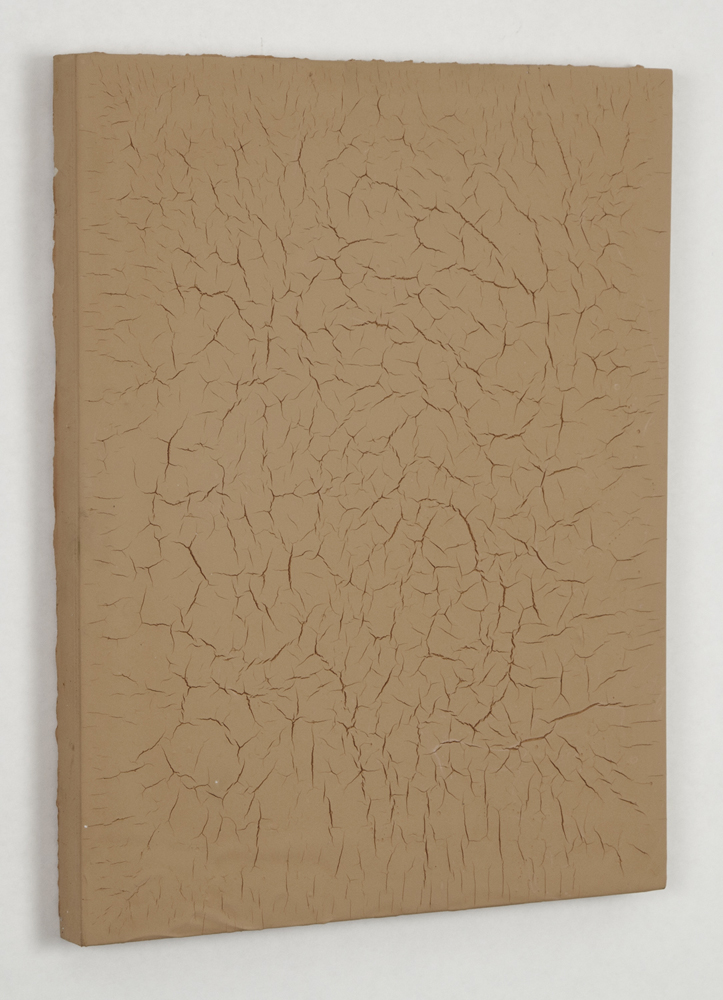 dried   2011   tempera on wood   14 X 11 X 0.75 inches