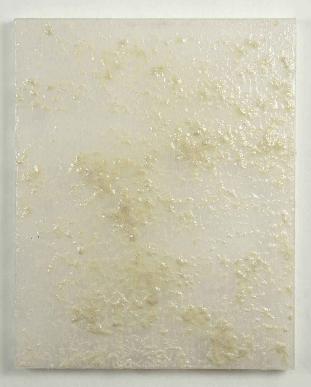 flour  2011   mixed media on plexiglass   20 X 16 X 1.5 inches