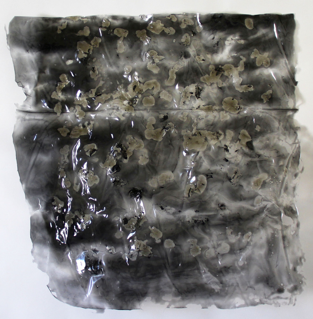 thin2 2014 gelatin, charcoal 22 x 21.5 inches