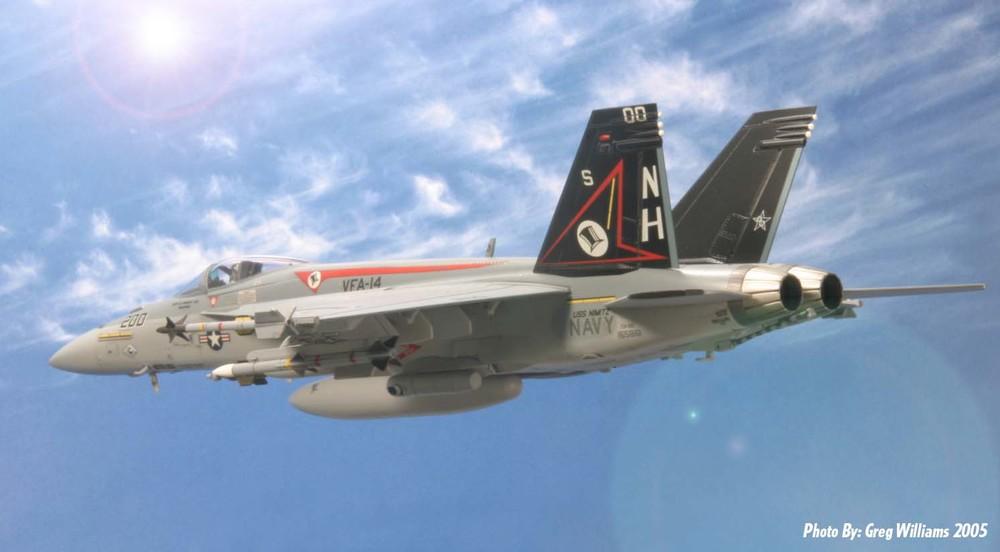 FA-18 Super Hornet CAG.jpg