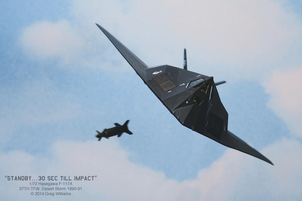1:72 Hasegawa F-117A © 2014 Greg Williams.jpg