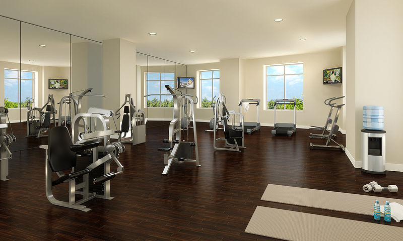 800px-Highgrove_Gym.jpg