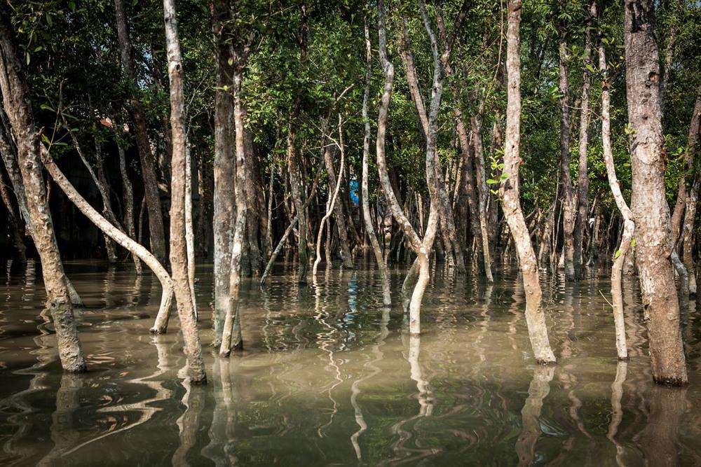 climate-migrants-bangladesh-maria-litwa-1104.jpg