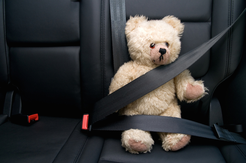 Seat-Belt-Teddy-Bear-copy.jpg