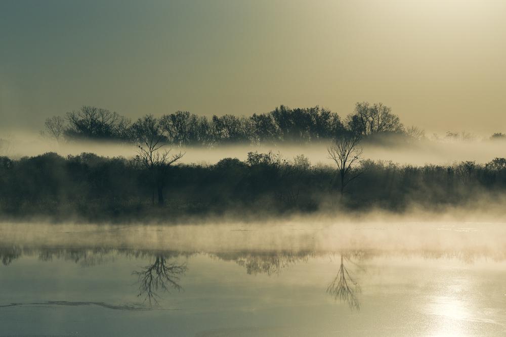 fog_01.jpg