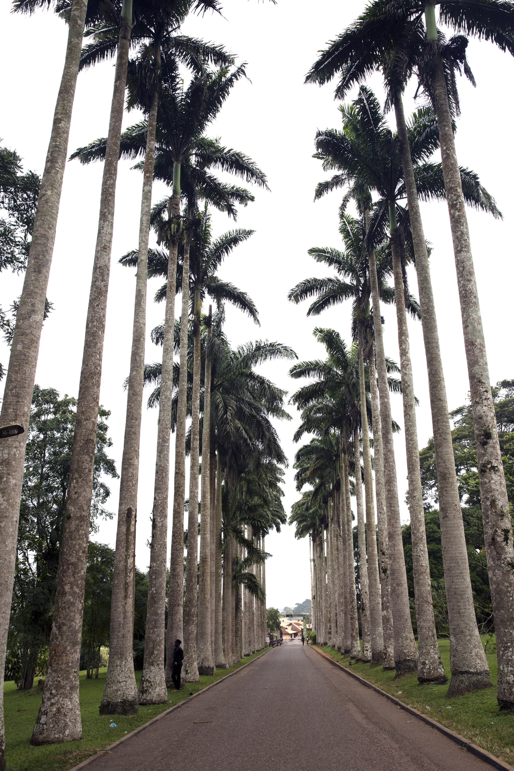 The entrance to the Aburi Gardens.