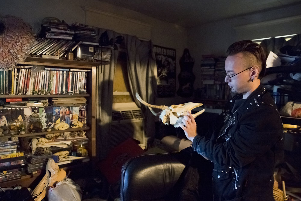 Tommy Bozarth, 28, holds a skull he has preserved as a part of his taxidermy work at his home in Mount Holly, NJ on Halloween night: October 31, 2017.