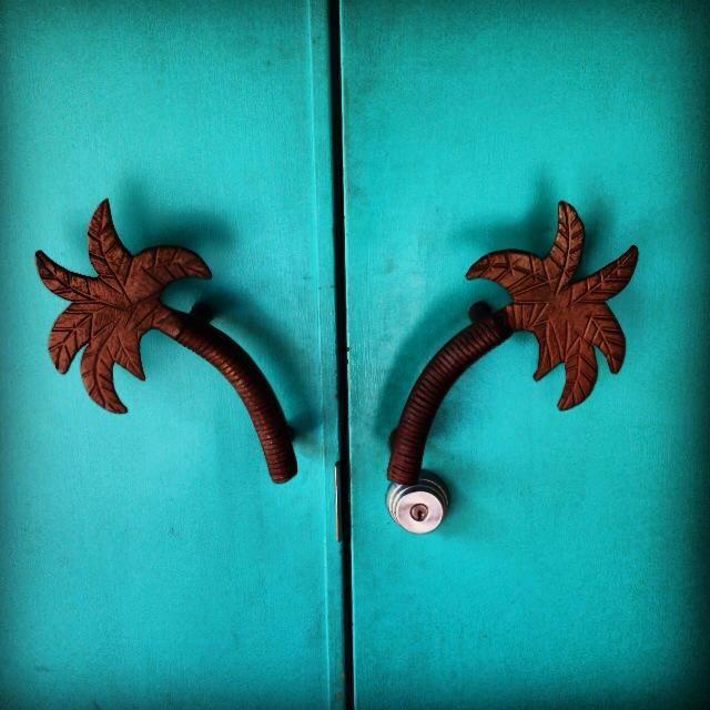 palm door.jpg