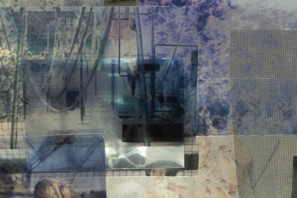 enclosure3.jpg