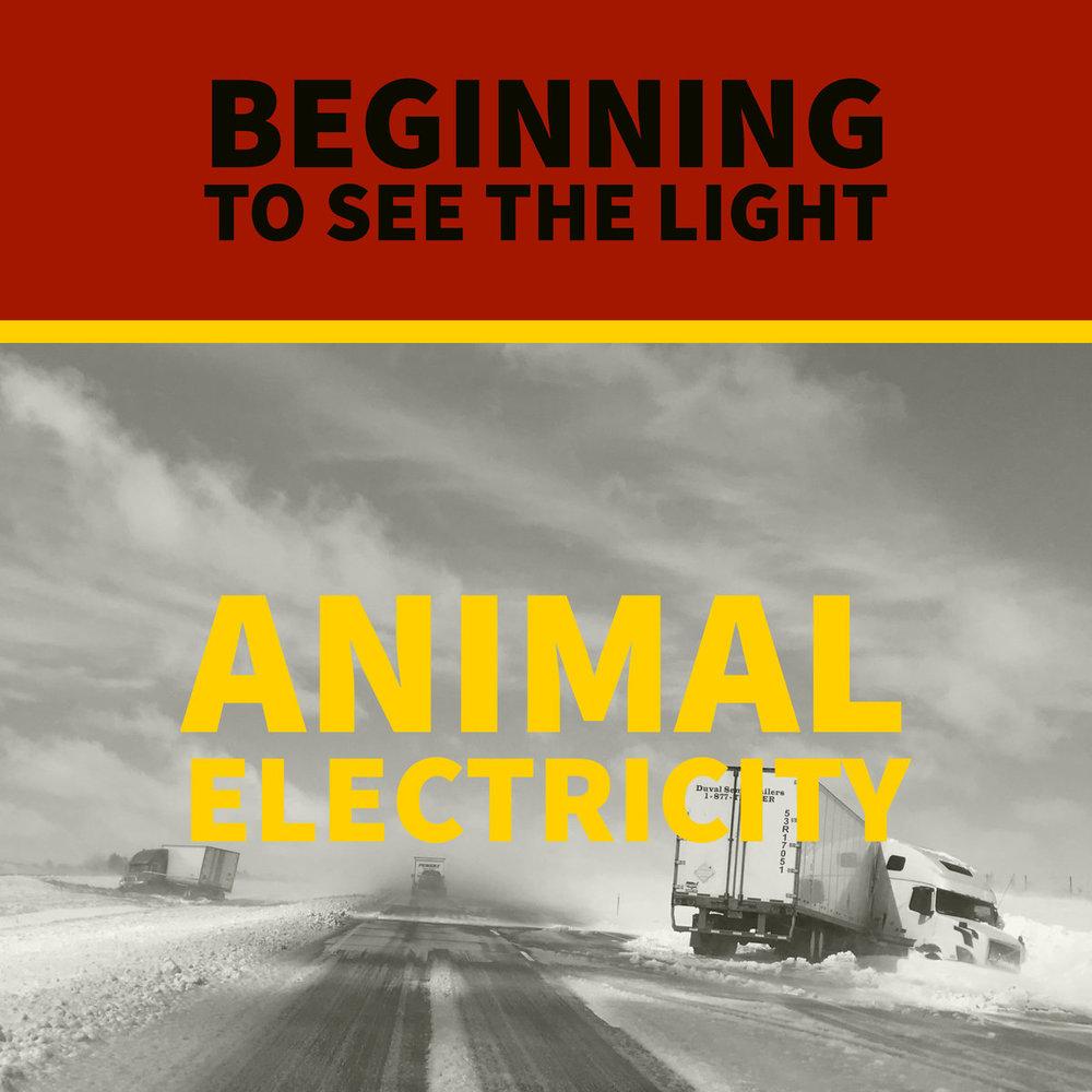 Animal electricity.jpg