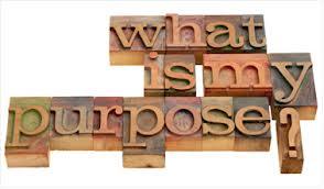 what is my purpose.jpg
