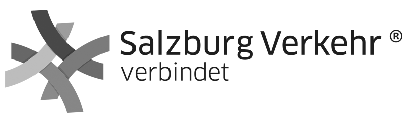 svv-logo-retina-e1439473202833.png