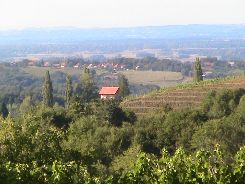 The Jeruzalem wine hills